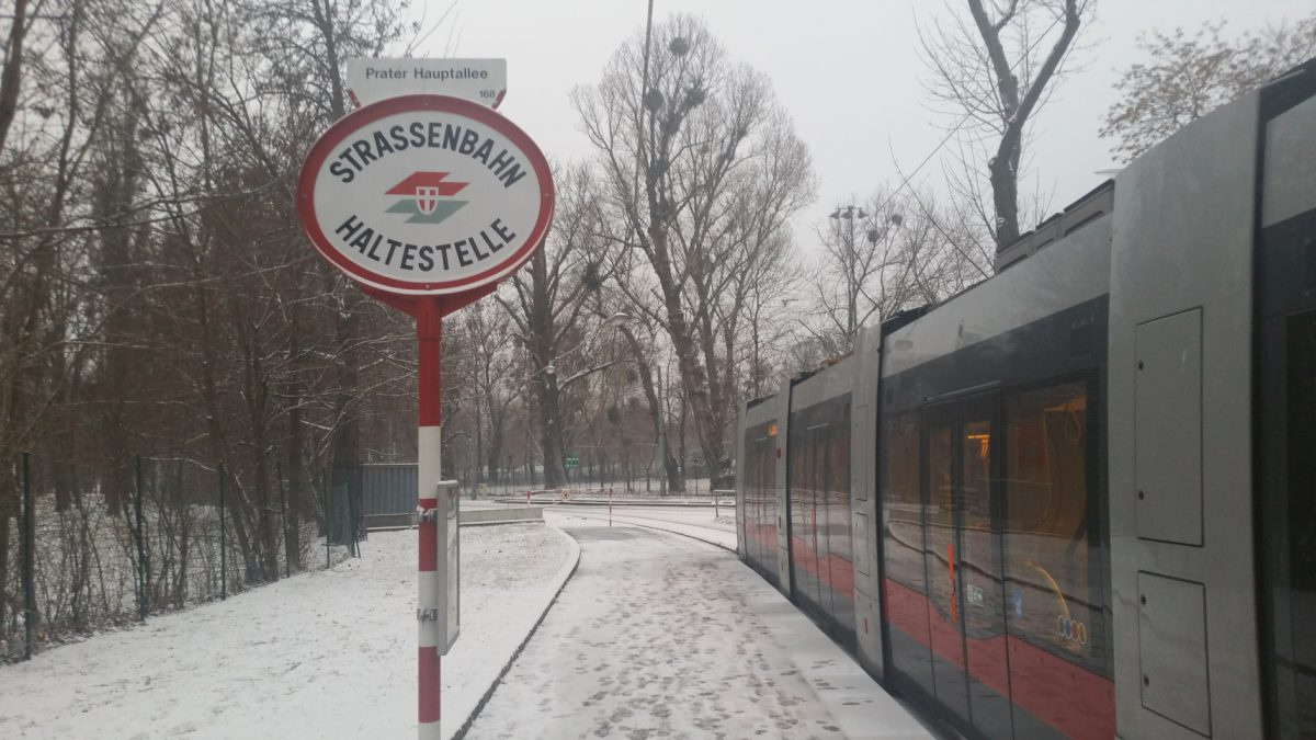 BimStreunen: Linie 1